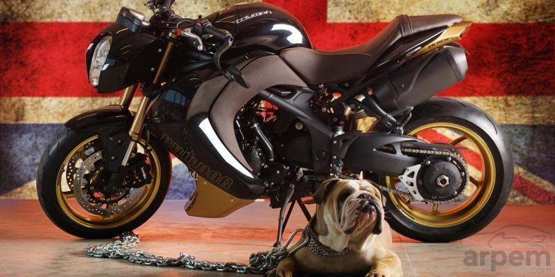 Triumph Speed Triple Bulldog by Vilner