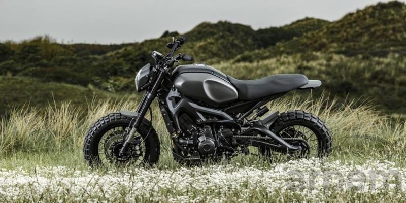 Yamaha XSR900 Monkeebeast