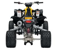 Fotos motos Can-Am DS 450 X mx