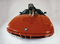 Fotos de coches BMW M1