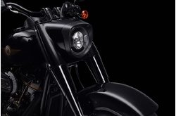 Fotos motos Harley-Davidson Softail Fat Boy 30th Anniversary 2020