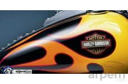 Video Harley Davidson FLS Softail Slim Pintura