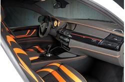Fotos de coches Mansory BMW X6