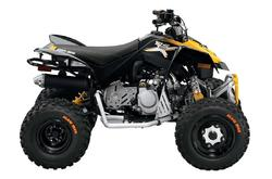 Can-Am DS 90 X