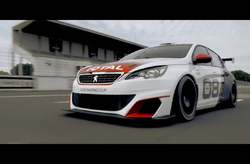 Vídeo Peugeot 308 Racing Cup 2015