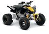 Can-Am DS 90 X 2015