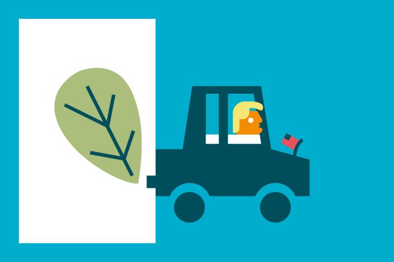 ¿Sabías que… un seguro de coche puede compensar tus emisiones de CO2?